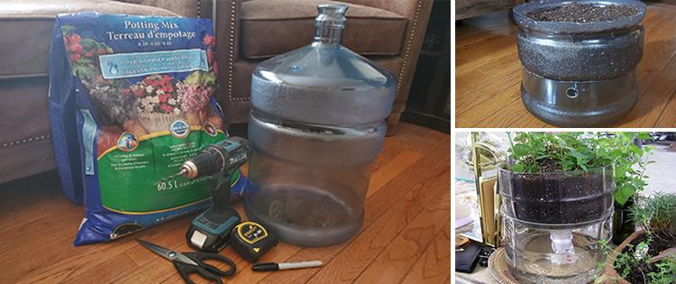 How To Make A Self-Watering Planter From A Water Bottle
