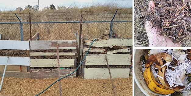 Boost Your Soil Quality With This Compost