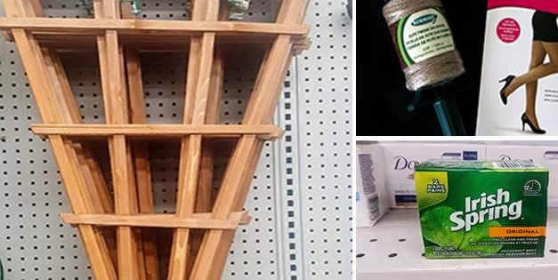 21 Gardening Items You Should Get From the Dollar Store