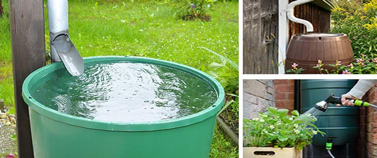 Is It Legal To Harvest Rainwater In Your State?