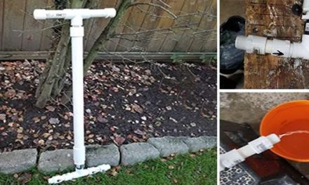 How To Make A Water Pump In Your Backyard