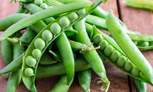 5 vegetables that are too easy to grow