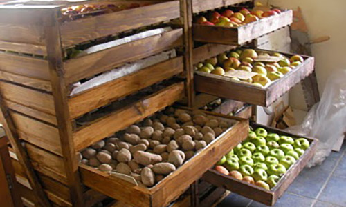 mistakes for storing food