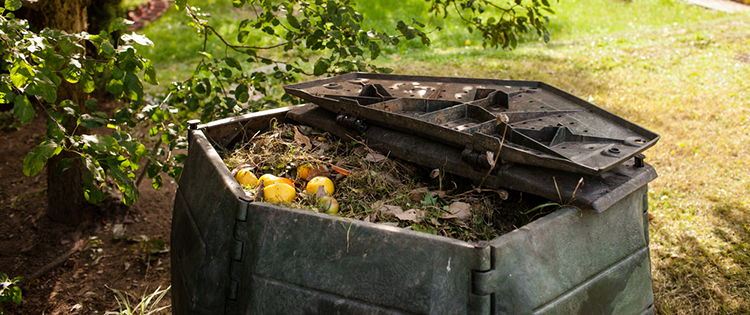 39 Items You Can Compost