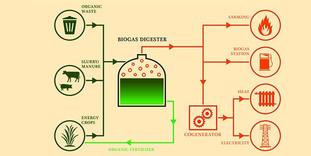 A Homesteader's Guide to Biogas as an Alternative Fuel