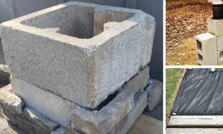 4 Ingenious One-Day Projects For Your Backyard